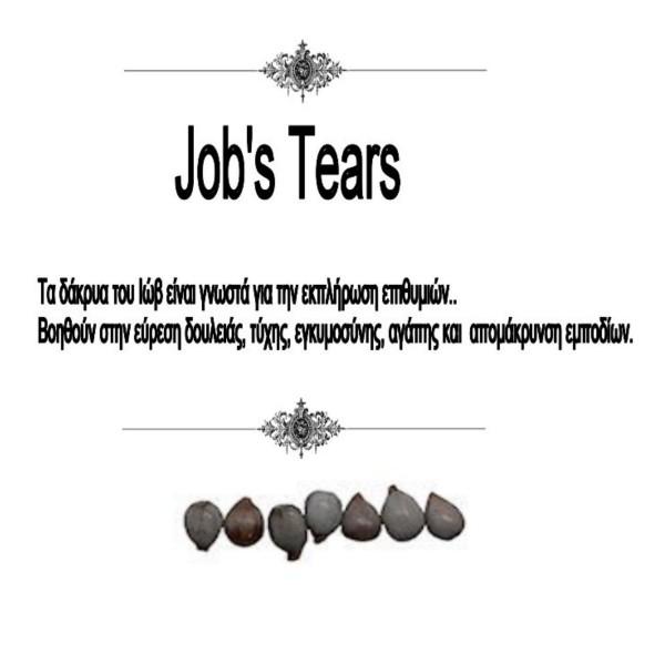 Job's Tears (Δάκρυα του Ιώβ)